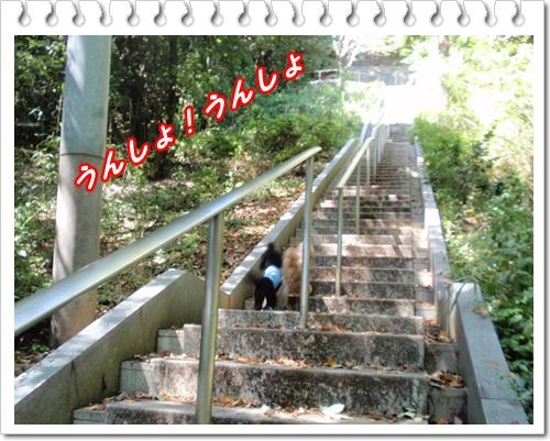 014_20090921205553.jpg