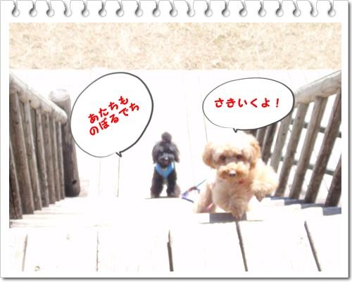 024_20090921205653.jpg