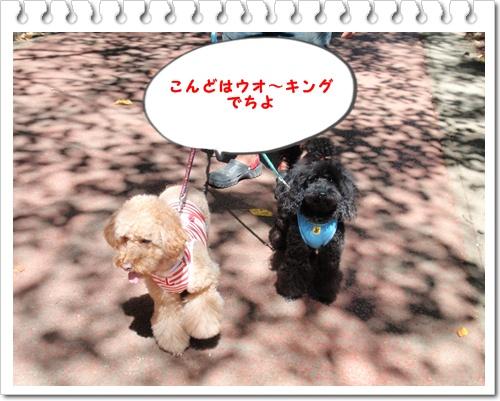 037_20090921205744.jpg