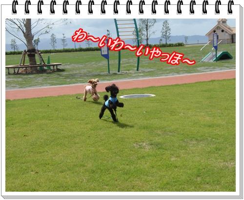 044_20090727200958.jpg