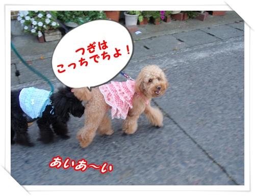 044_20090913205243.jpg