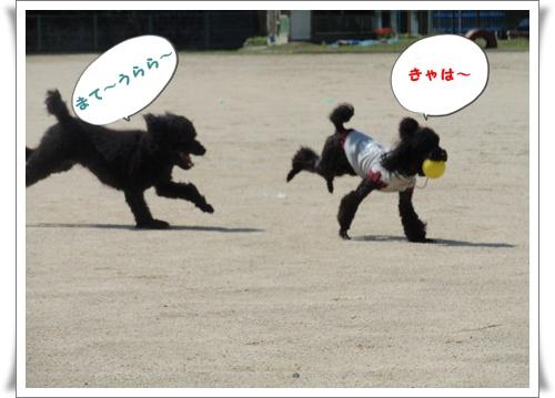 052_20091005205110.jpg