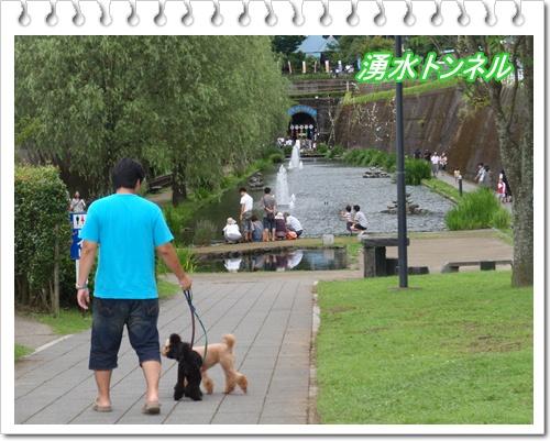 063_20090810193103.jpg