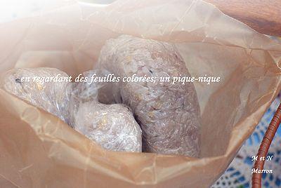 desfeuillescoloreespiquenique02.jpg