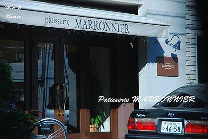 marronnier.jpg