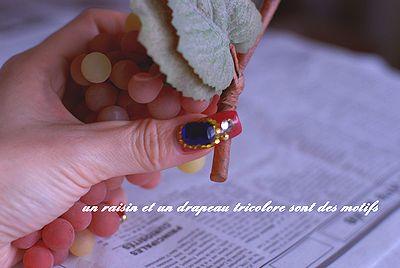 raisinetdrapeautricolore03.jpg