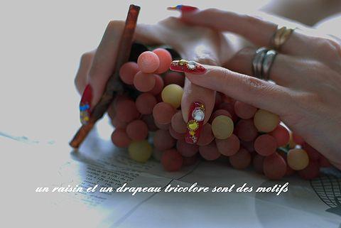 raisinetdrapeautricolore04.jpg