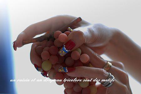 raisinetdrapeautricolore05.jpg