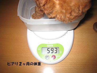 ピアリ2ヶ月の体重