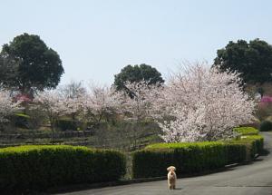 200946dsaf.jpg