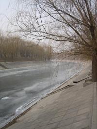 2009123