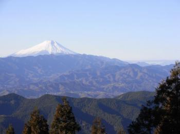 090104景信山・高尾山1