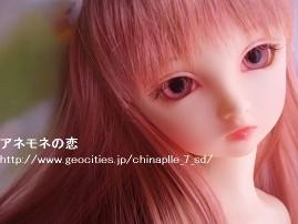 P6210017-090621.jpg