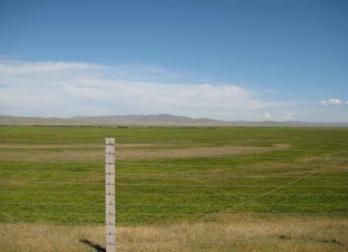 08年8月313満洲里~黒山頭鎮国境