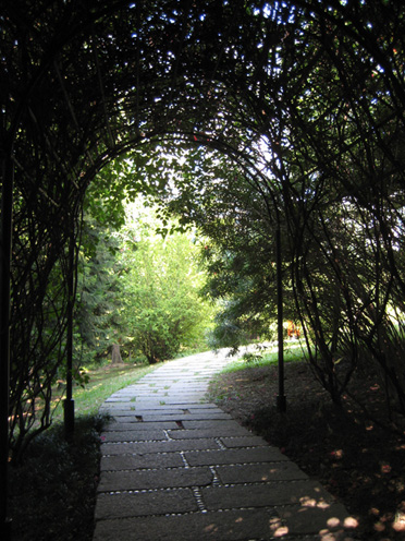 08年12月広州珠江公園6