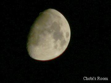 月が~♪出た出たぁ~♪