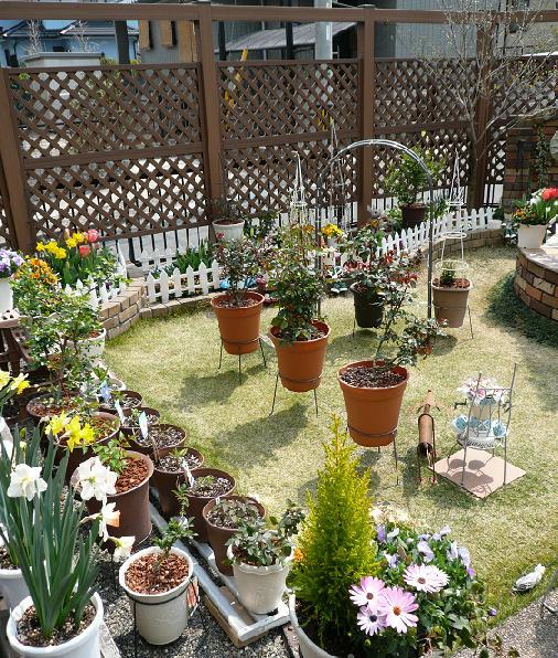 P1130099_choco garden4-1
