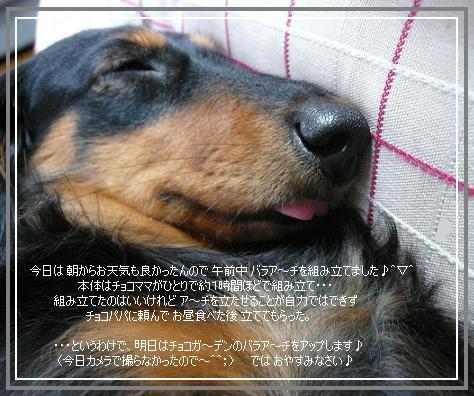 P1050142_cc.jpg