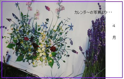 P1100119_33.jpg