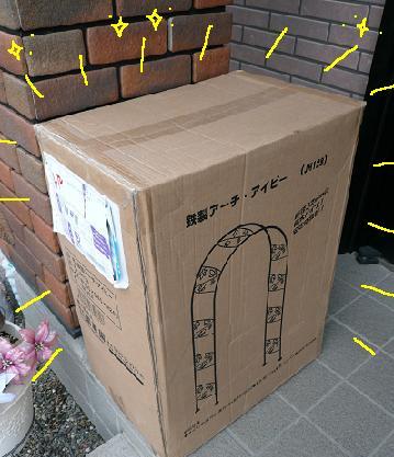 P1100775_aibi.jpg