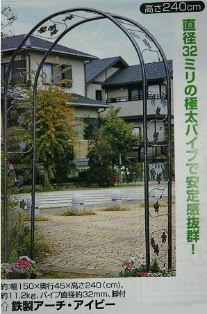 P1100780_aibi2.jpg