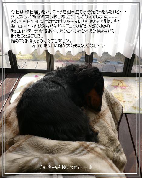 P1100794_a.jpg
