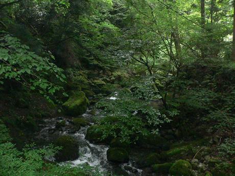 琵琶湖2 032