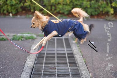 ジャンプ★