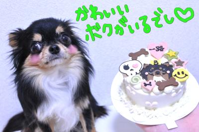 超かわいいケーキ★