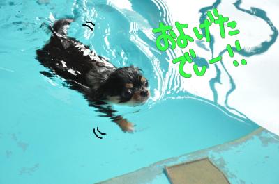 泳げるじゃーん!