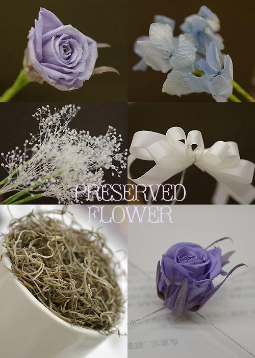 flower_20090306170109.jpg