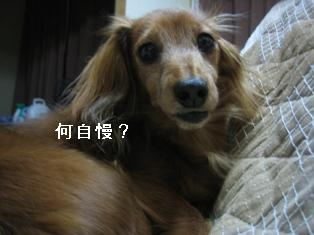 IMG_6277blog.jpg