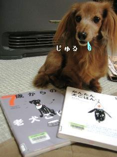 IMG_6920blog.jpg