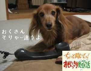 IMG_7043blog.jpg