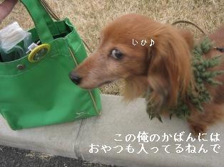 IMG_7092blog.jpg