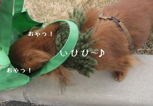 IMG_7093blog.jpg