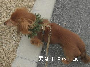 IMG_7100blog.jpg