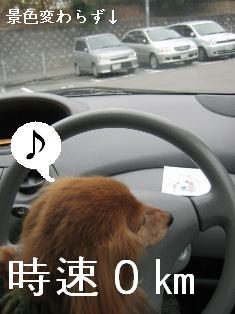 IMG_7105blog.jpg
