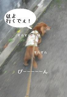 IMG_7153blog.jpg