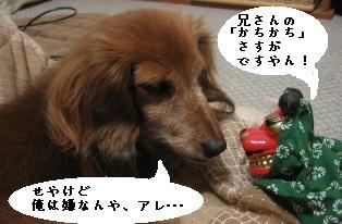 IMG_7235blog.jpg