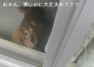 IMG_7240blog.jpg