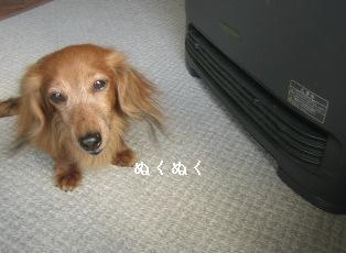 IMG_7243blog.jpg