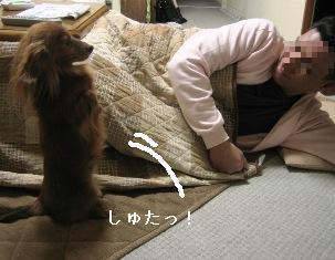 IMG_7290blog.jpg