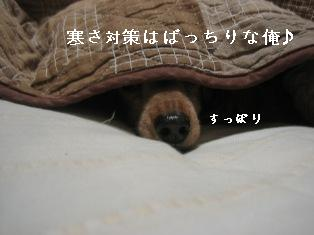 IMG_7307blog.jpg