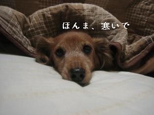 IMG_7309blog.jpg