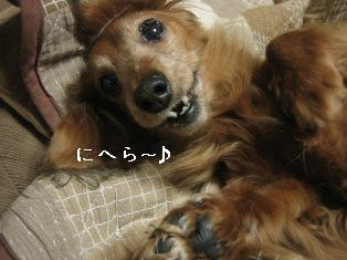 IMG_7396blog.jpg