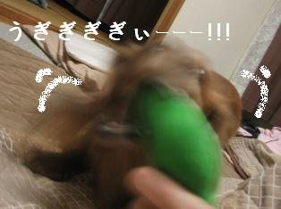 IMG_7438blog.jpg