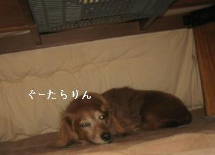 IMG_7564blog.jpg