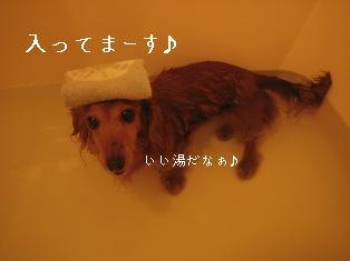 IMG_7614blog.jpg