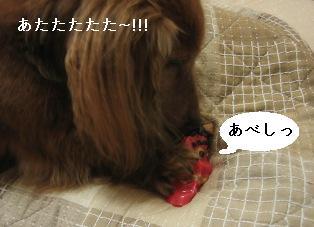 IMG_7620blog.jpg